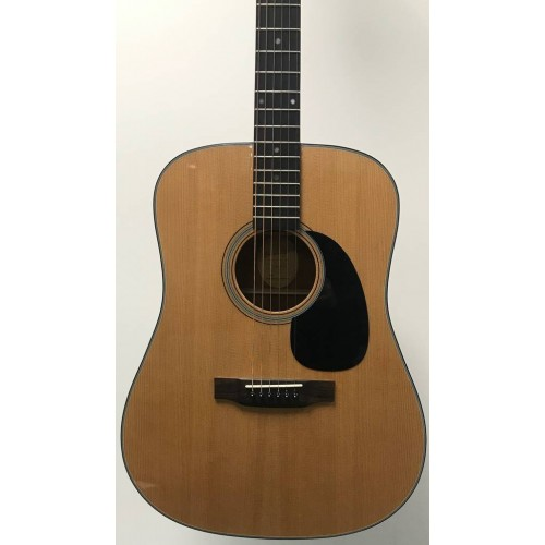 Blue Ridge BR-40 (Pre-owned)