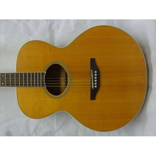 Washburn J-50s Acoustic (Pre-owned)